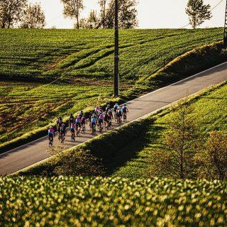 Tomorrow's already our last #rideblackandbike of the season !  Join us once more to celebrate together ☀️🚴 . . . #rideblackandbike #gerpinnes #bikeshop #blackandbike #lastride #endofseason #ridetogether #everywednesday #bikeporn #amazingpictures #photoshoot #charleroi #bikeporn #ridetogether #celebration #thankyou #roadbike #roadcycling #cyclingaddict